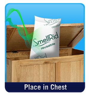 Smellrid Reusable Charcoal Deodorizer Amp Air Purifier X